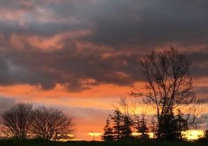 Sunrise runs are always good.